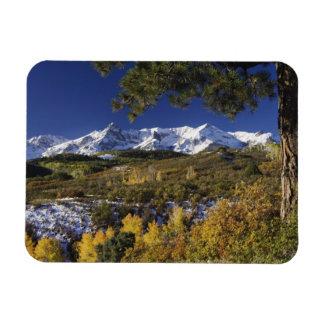 San Juan Mountains and Aspen trees in fallcolor Rectangular Photo Magnet