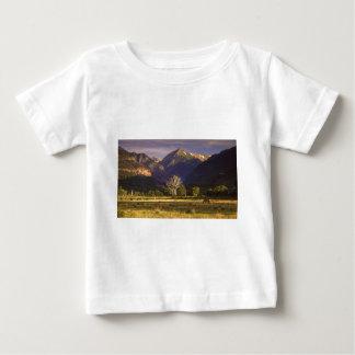 San Juan Mountains CO Infant T-shirt