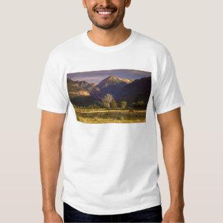 San Juan Mountains CO T Shirt