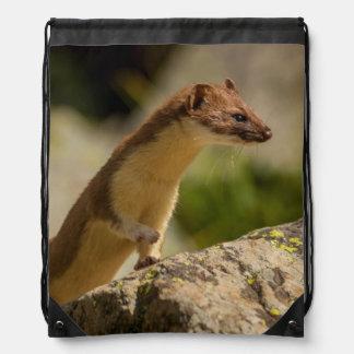 San Juan Mountains. Short-Tailed Weasel Drawstring Backpack