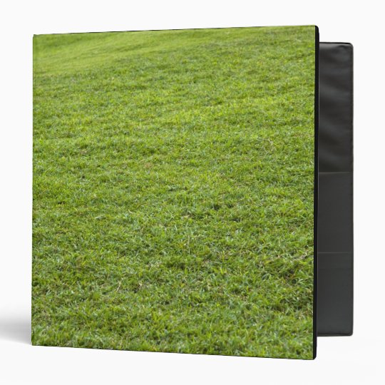 San Juan, Puerto Rico - Green grass is Binder