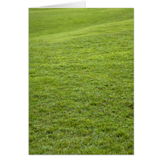 San Juan, Puerto Rico - Green grass is Card