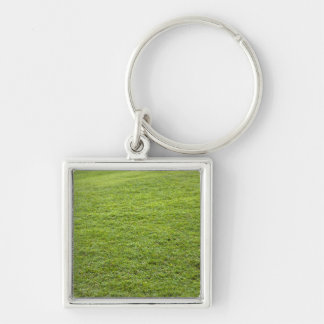 San Juan, Puerto Rico - Green grass is Keychain