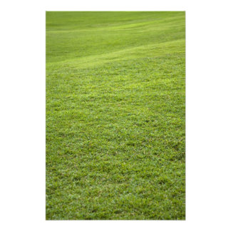 San Juan, Puerto Rico - Green grass is Photo Print