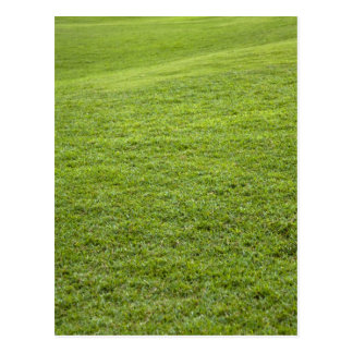 San Juan, Puerto Rico - Green grass is Postcard