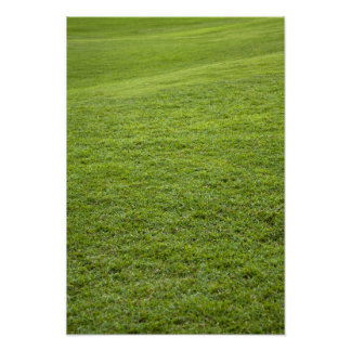San Juan, Puerto Rico - Green grass is Poster