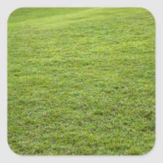 San Juan, Puerto Rico - Green grass is Square Sticker