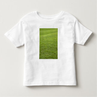 San Juan, Puerto Rico - Green grass is Toddler T-shirt