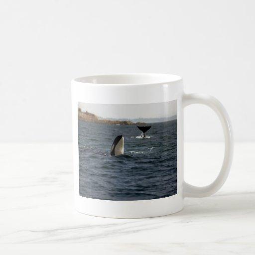 San Juan Whales Classic White Coffee Mug