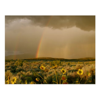 San Luis Valley Rainbow Postcard