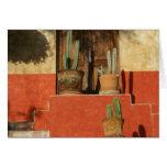 San Miguel de Allende Door Tarjetas