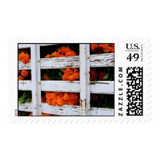 San Miguel de Allende Flowers Stamp