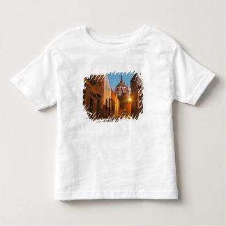 San Miguel de Allende, Mexico. Credit as: Nancy Toddler T-shirt