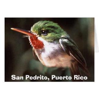 San Pedrito, San Pedrito, Puerto Rico Card