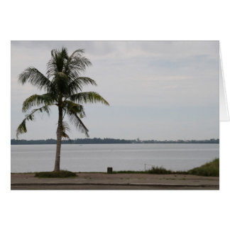 San Pedro Bay Card