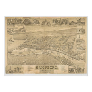 San Pedro, CA. Panoramic Map 1895 (1319A) Poster