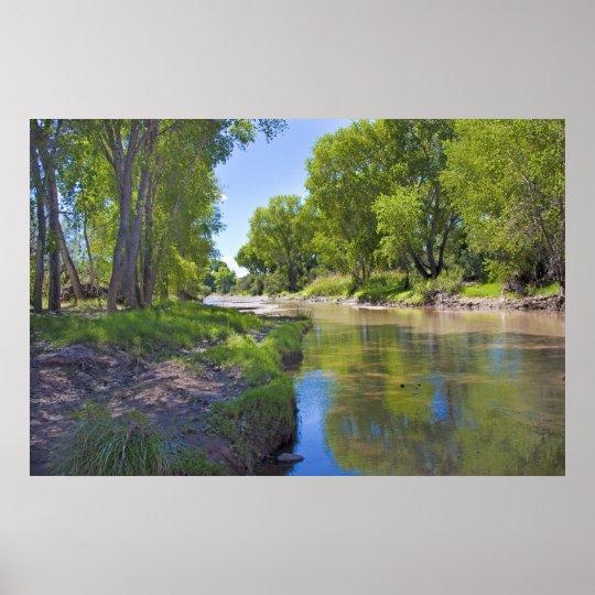 San Pedro River near Fairbank Poster