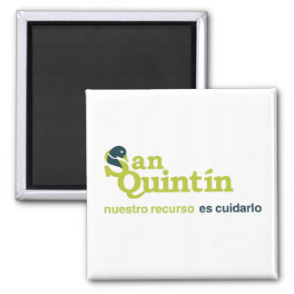 San Quintin Bay - Magnets