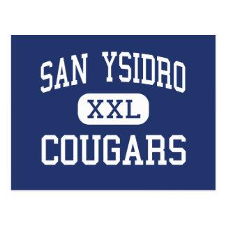 San Ysidro - Cougars - High - San Diego California Postcard