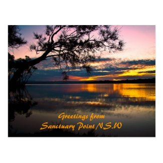 Sanctuary Beauty, Greetings from Sanctuary Poin... Postcard