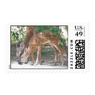 sanctuary - Customized Postage Stamp