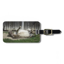 Sand Bathing Donkey Bag Tag