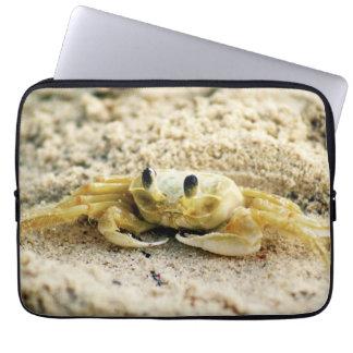 "Sand Crab, Curacao, Caribbean islands, 13"" Photo Computer Sleeve"