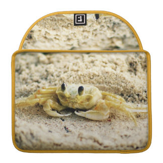 "Sand Crab, Curacao, Caribbean islands, Photo 13"" Sleeve For MacBook Pro"
