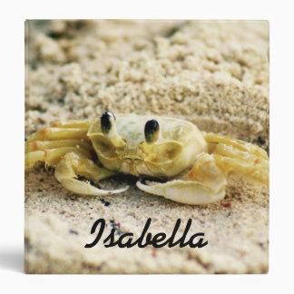 Sand Crab, Curacao, Caribbean islands, Photo Binder