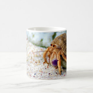 Sand Crab, Curacao, Caribbean islands, Photo Coffee Mug