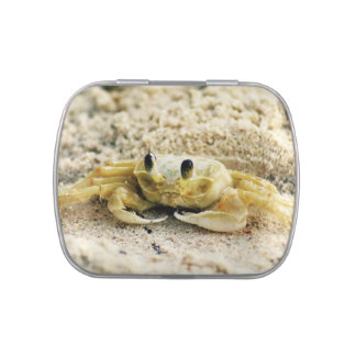 Sand Crab, Curacao, Caribbean islands, Photo Jelly Belly Tin