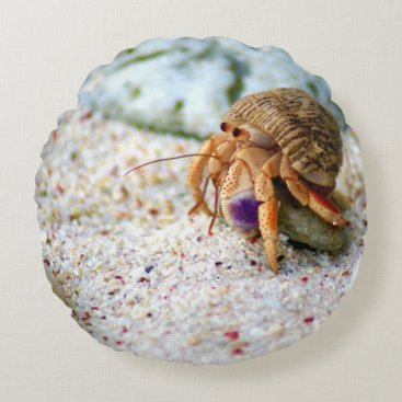 Beach Themed Sand Crab, Curacao, Caribbean islands, Photo Round Pillow