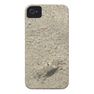 Sand Crab iPhone 4 Cover