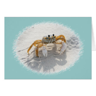 Sand Crab Notecard