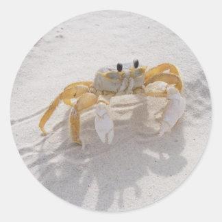 Sand Crab Sticker