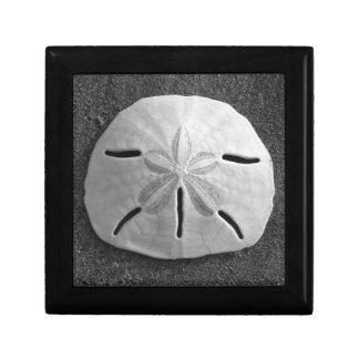 Sand Dollar B&W Sea Shell Photo Gift Jewelry Box