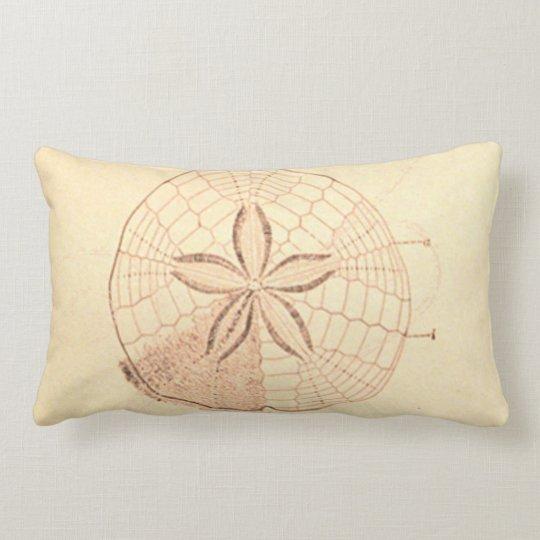 Sand Dollar Beach Illustration Lumbar Pillow