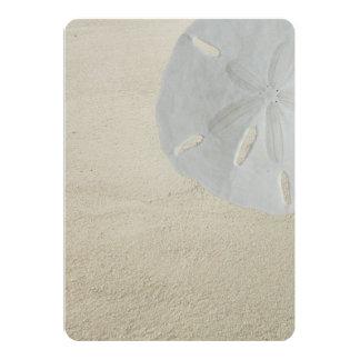 Sand Dollar Beach Sand Blank Program Fan Paper Card