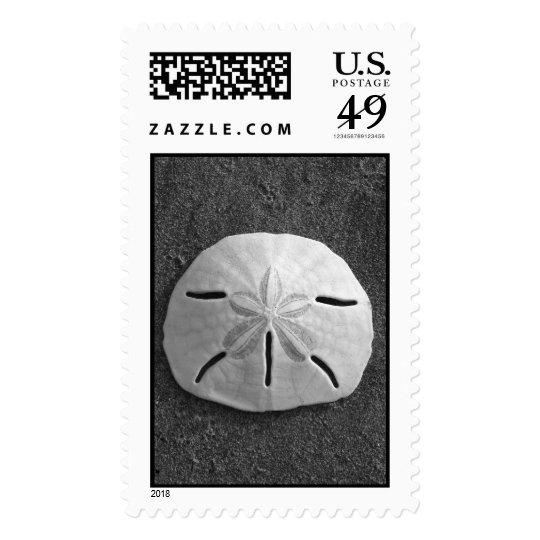 Sand Dollar (Black and White) Stamp