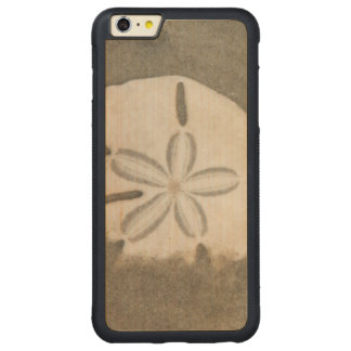 Sand dollar (Echinarachnius parma) Carved® Maple iPhone 6 Plus Bumper Case