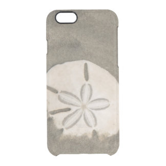 Sand dollar (Echinarachnius parma) Clear iPhone 6/6S Case