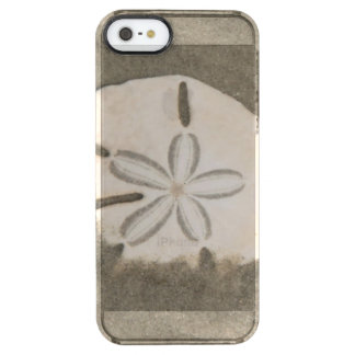 Sand dollar (Echinarachnius parma) Clear iPhone SE/5/5s Case