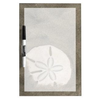 Sand dollar (Echinarachnius parma) Dry-Erase Board