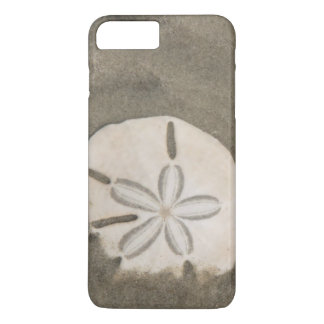 Sand dollar (Echinarachnius parma) iPhone 7 Plus Case