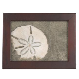Sand dollar (Echinarachnius parma) Memory Box