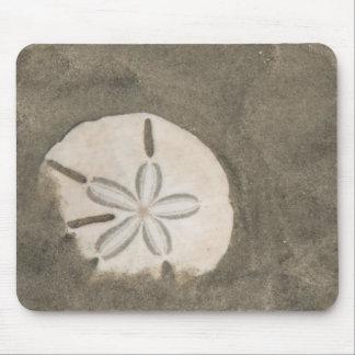 Sand dollar (Echinarachnius parma) Mouse Pad