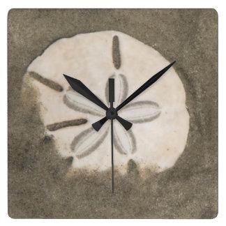 Sand dollar (Echinarachnius parma) Square Wall Clock