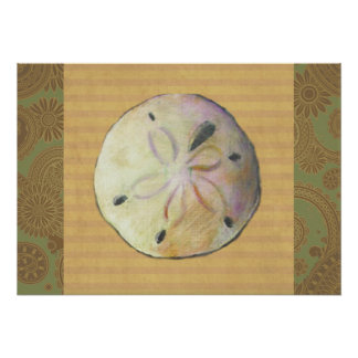 Sand dollar for beach combers poster