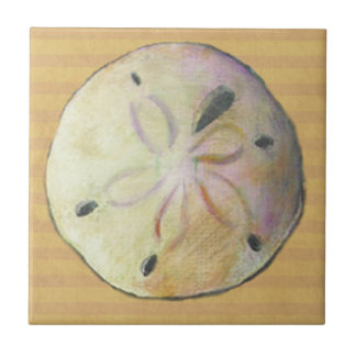 Sand dollar for beach combers small square tile