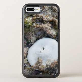 Sand Dollar in the Fiji Reef at Low Tide OtterBox Symmetry iPhone 7 Plus Case